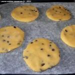 Cookies aux pepites de chocolat plaque