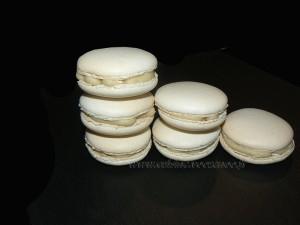 Macarons vanill et chocolat blanc presentation