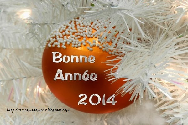 bonne-année-2014