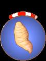 ecuyer-patatedouce.90x120